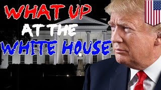EUROPESE OMROEP | TomoNews Funnies | What Up at the White House recap: Trump heads back on the campaign trail, Kushner speaks | 1498229527 2017-06-23T14:52:07+00:00