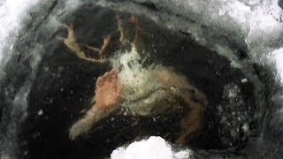 EUROPESE OMROEP | American Eye | MOST MYSTERIOUS Things Found Frozen In Ice | 1519407002 2018-02-23T17:30:02+00:00