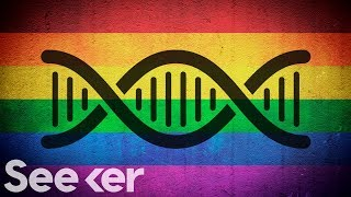 EUROPESE OMROEP | Seeker | Is Homosexuality in Your Genes? | 1518807602 2018-02-16T19:00:02+00:00