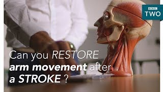 EUROPESE OMROEP | BBC | Can we restore arm movement after a stroke?  - Trust Me I'm a Doctor - BBC Two | 1518696003 2018-02-15T12:00:03+00:00